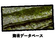 海苔データベース